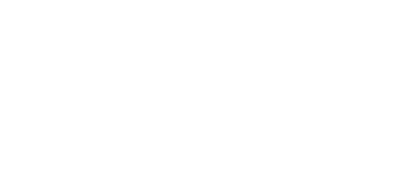 CHASE IT